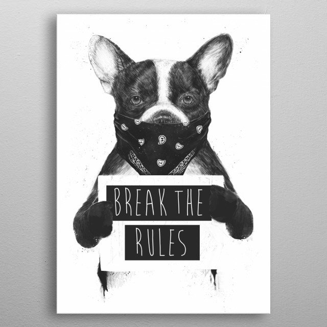 Rebel dog metal poster