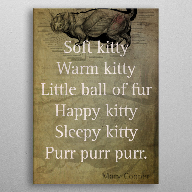 Soft Kitty Warm Kitty Poem Quotation Big Bang Theory Inspired Sheldon Cooper Mother On Worn Canvas. metal poster