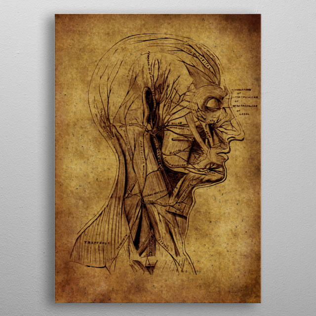 Fascinating  metal poster designed with love by renee. Decorate your space with this design & find daily inspiration in it. metal poster