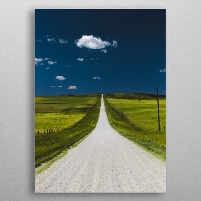 Two roads diverged in a wood, and I took the one less traveled by, And that has made all the difference. metal poster