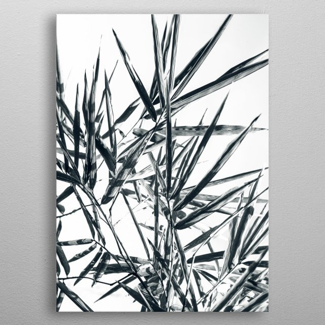 bamboo metal poster