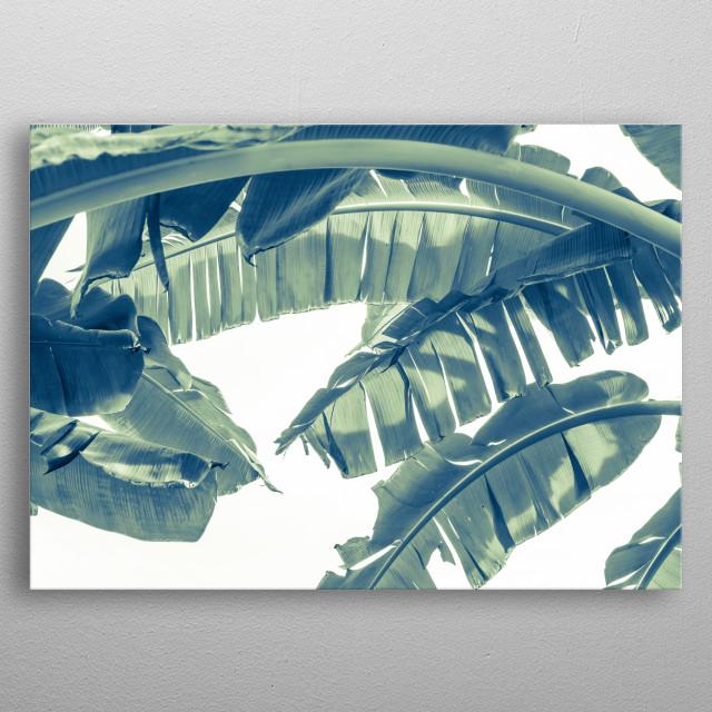 banana leaves metal poster