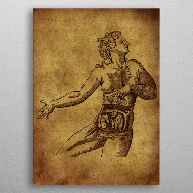 Anatomic34 metal poster