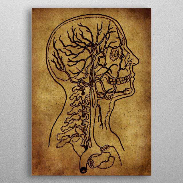 Anatomic30 metal poster