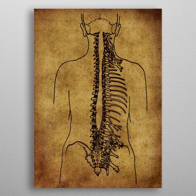 Anatomic33 metal poster