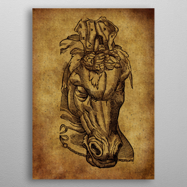 Anatomic45 metal poster