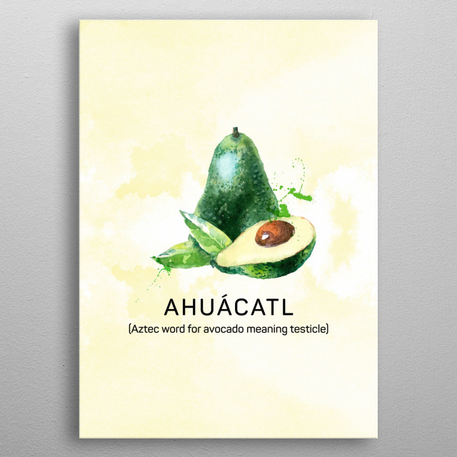 A fun kitchen poster about avocado's original name in Aztec - it means testicle - and they always grown in twos. metal poster