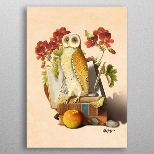 Apprentice Owl metal poster