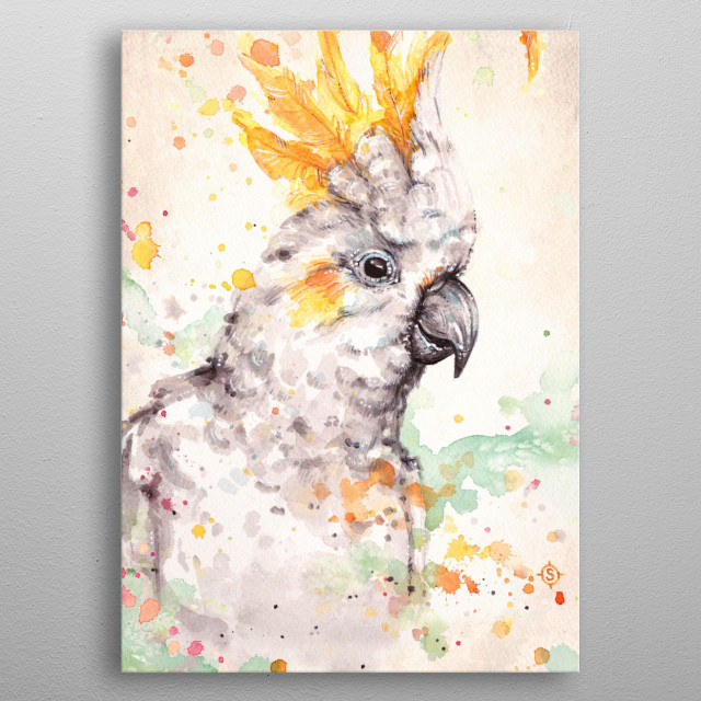 Clowning Around (Sulphur Crested Cockatoo)   Water Colour Art   metal poster