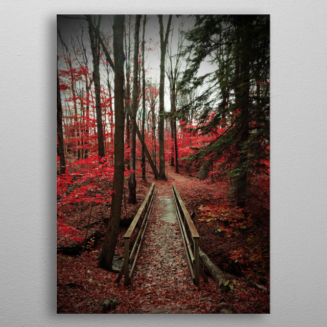 A wooden bridge provides passage over a stream which flows through a park in  New York State. The scene was photographed on an autumn day, and the leaf color has been enhanced to a vibrant red. The shadow of a vignette wreaths the perimeter of the image. Has an ethereal, haunting quality. Photography by Brooke T Ryan. metal poster
