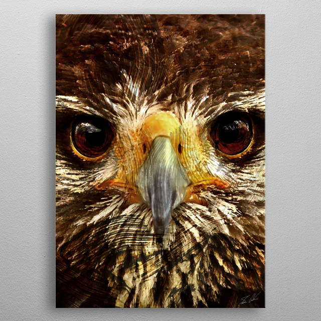 Animals - Eagle metal poster