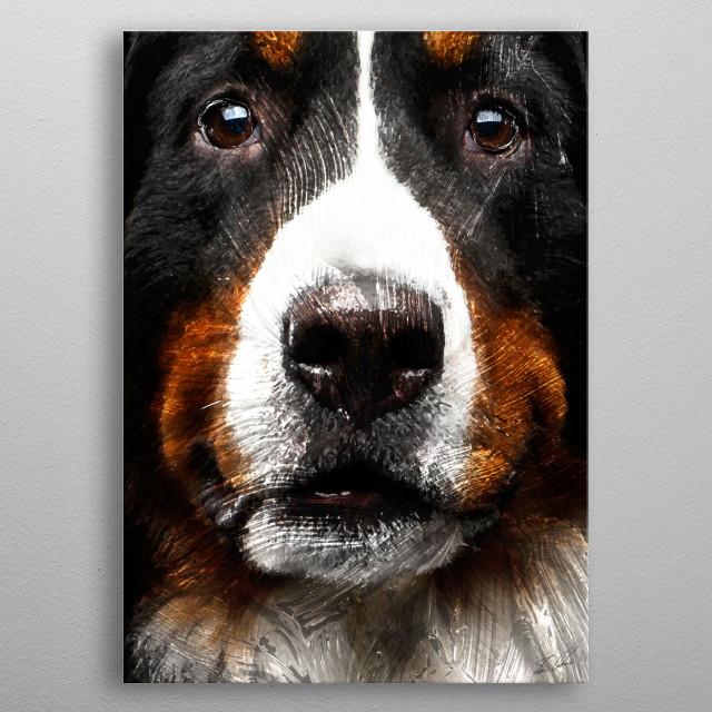 Animals - Bernese Mountain Dog metal poster