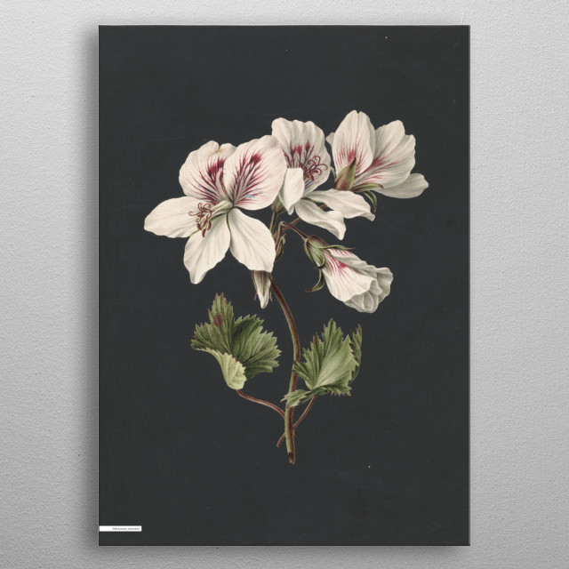 Fascinating metal poster designed by Fine Art  . Displate has a unique signature and hologram on the back to add authenticity to each design. metal poster