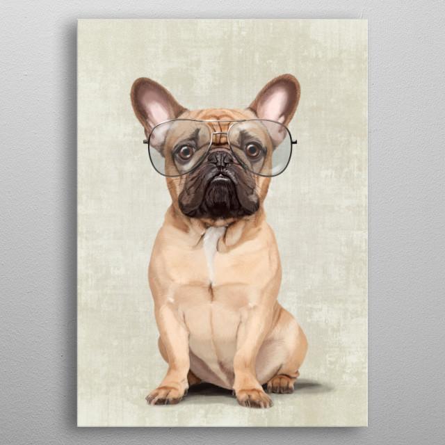 Portrait of elegant Mr French Bulldog with glasses. metal poster