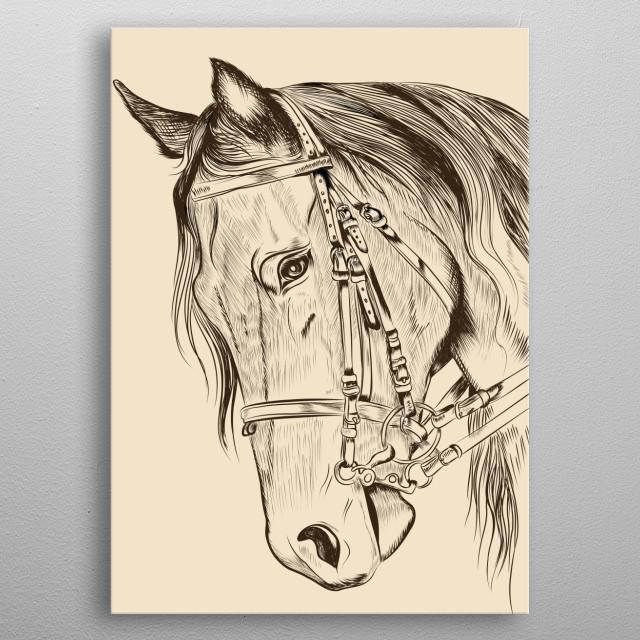 A Horse Portrait metal poster