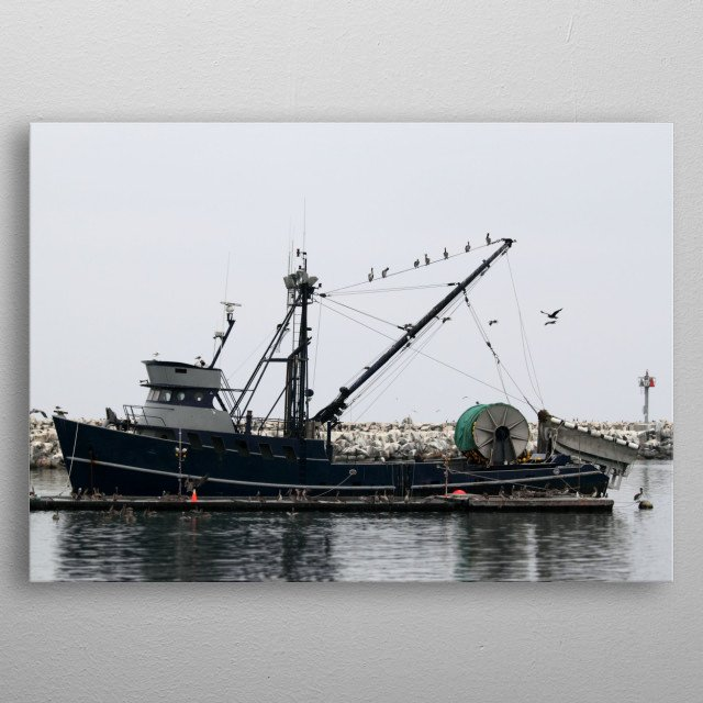Fishing Boat Fishing boat in the harbor with many pelicans. metal poster