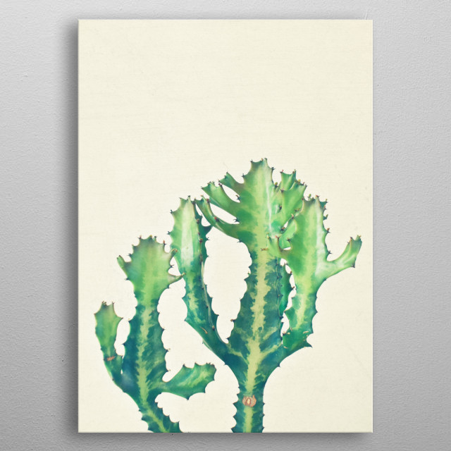Still life cactus photography by Cassia Beck. metal poster