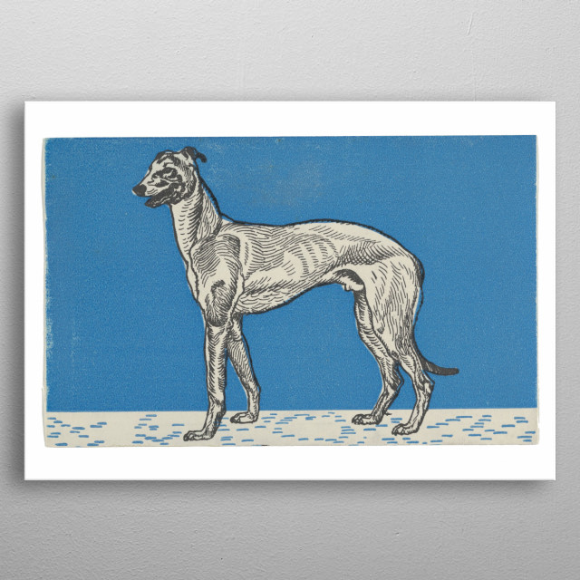 Moriz Jung - Greyhound, 1912, color litograph; Collection of The Metropolitan Museum of Art in New York metal poster
