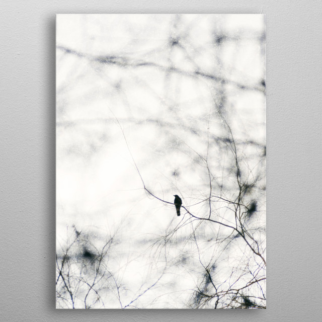 Freebird iii. A solitary crow in winter's branches metal poster