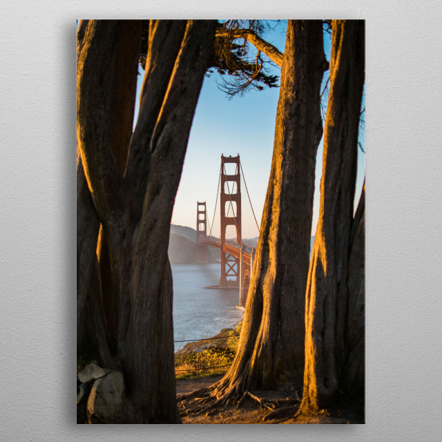 High-quality metal wall art meticulously designed by picarus would bring extraordinary style to your room. Hang it & enjoy. metal poster