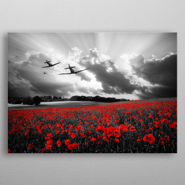 Spitfires over a poppy field metal poster