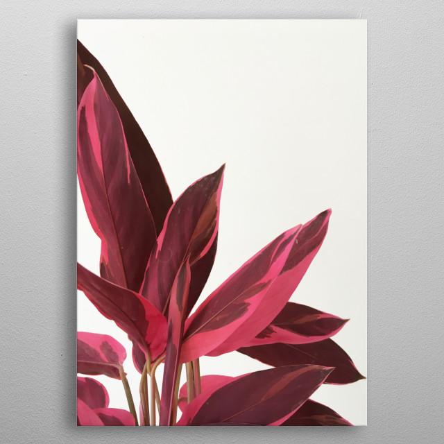 Red Leaves II metal poster