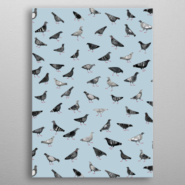 Pigeons strutting about on a blue ground. metal poster