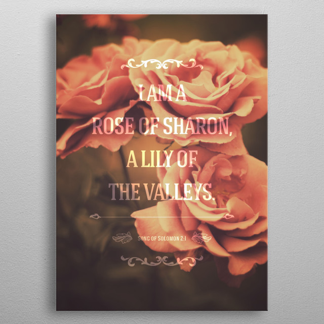 Song of Solomon 2:1 metal poster