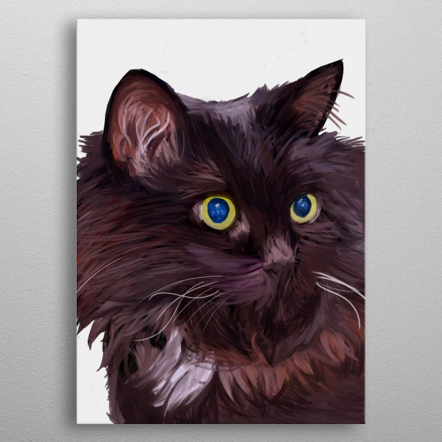 Perhaps most striking about this fluffy cat is his blue eyes, which seem to pierce right through your very soul. metal poster