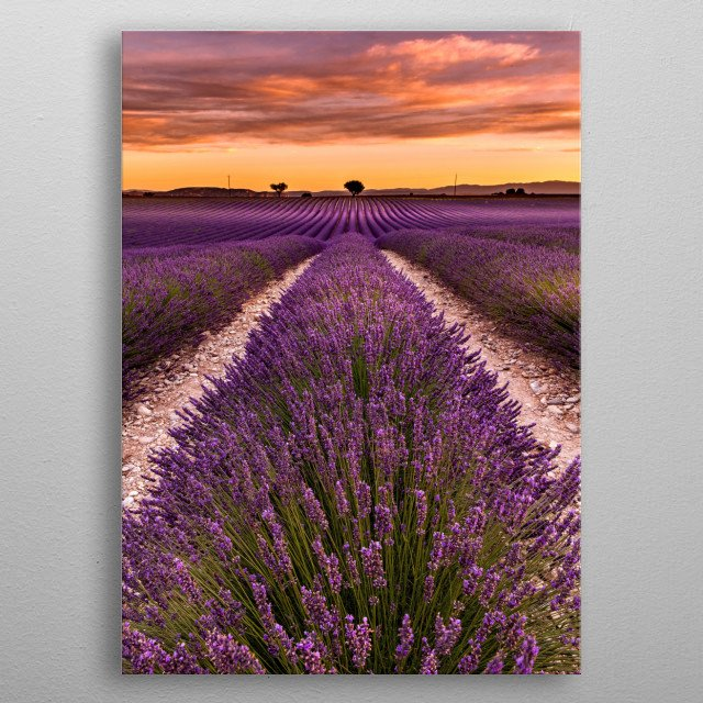High-quality metal wall art meticulously designed by jorgemaiaphotographer would bring extraordinary style to your room. Hang it & enjoy. metal poster