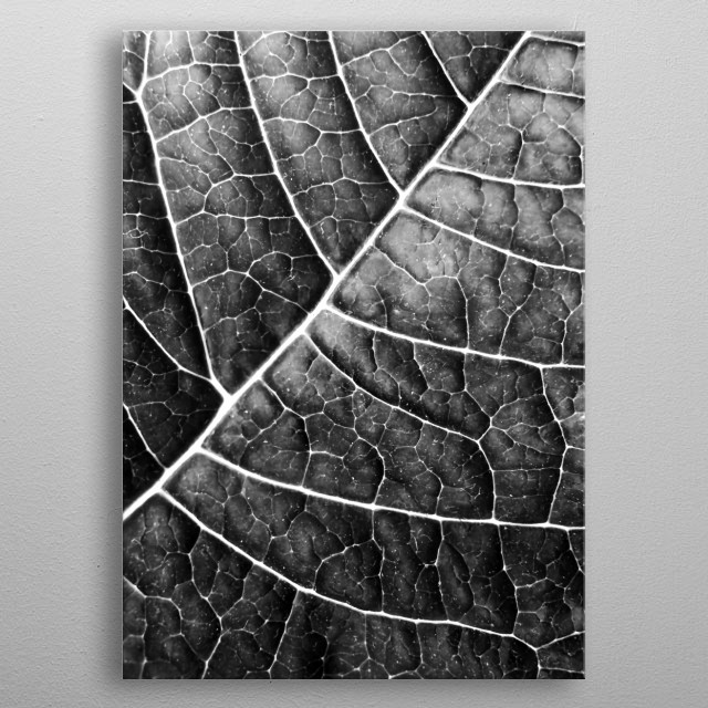 Fascinating  metal poster designed with love by piaschneider. Decorate your space with this design & find daily inspiration in it. metal poster