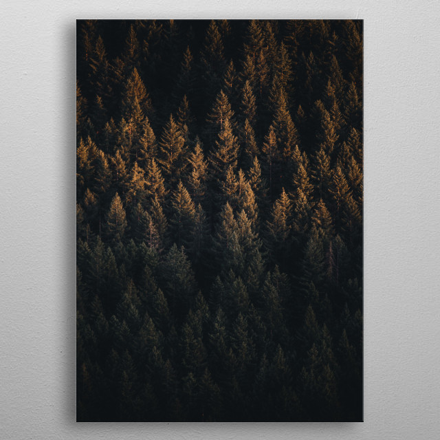 Forest metal poster