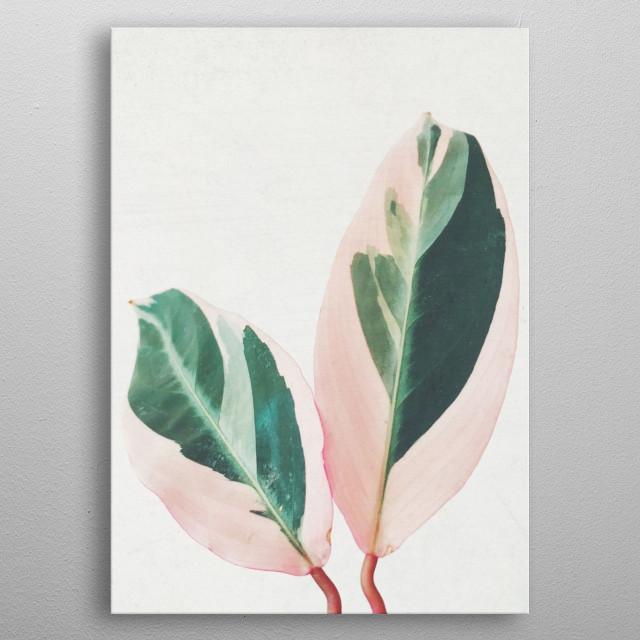 Pink Leaves I metal poster