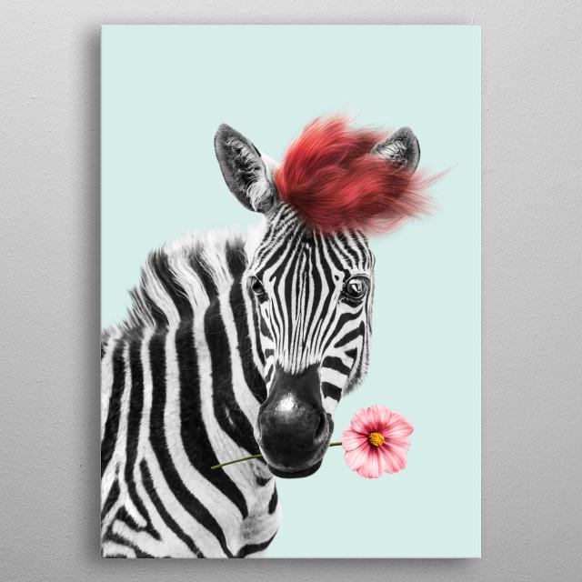 Zebra cool metal poster