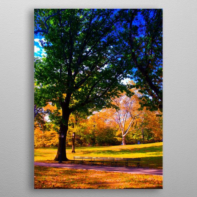 central park 2 metal poster