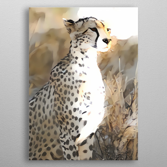 The powerful Cheetah observes the savannah ... metal poster