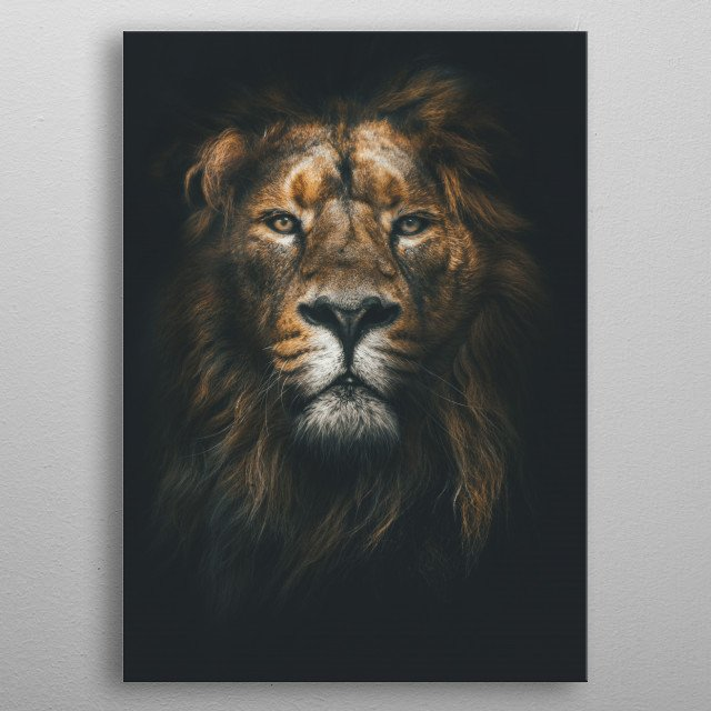 King of the Jungle metal poster