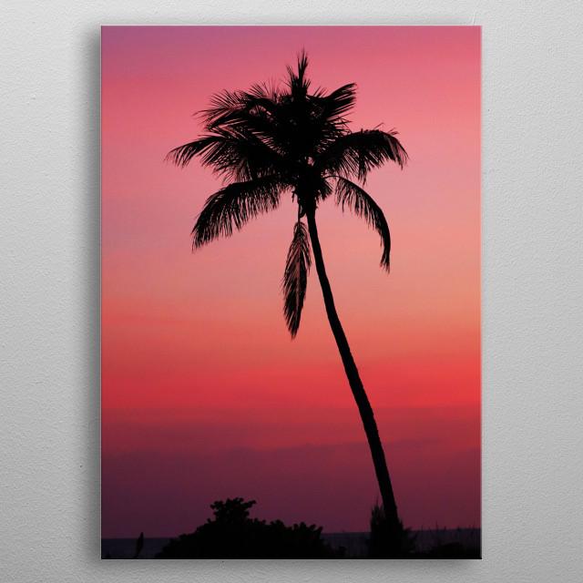 """Sunset Palm"" metal poster"