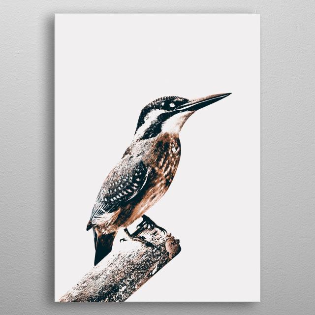 BIRD metal poster