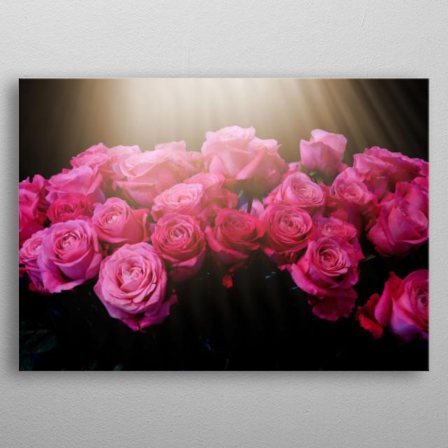 Pink Roses metal poster