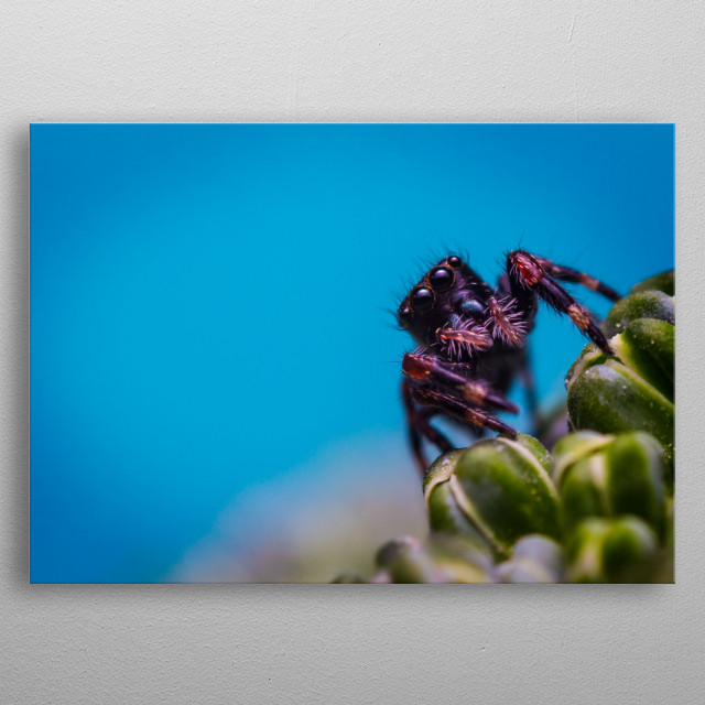 High-quality metal print from amazing Little Monsters collection will bring unique style to your space and will show off your personality. metal poster