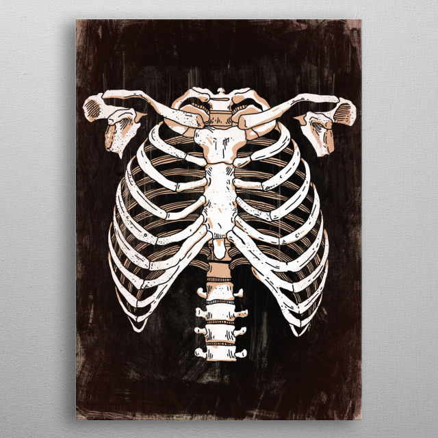 skeleton / anatomy / art / bones / science / vintage / technical poster metal poster
