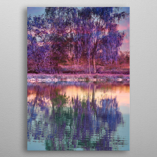 reflection of tree on water metal poster