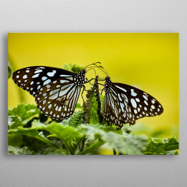 High-quality metal wall art meticulously designed by Shivajmc12 would bring extraordinary style to your room. Hang it & enjoy. metal poster