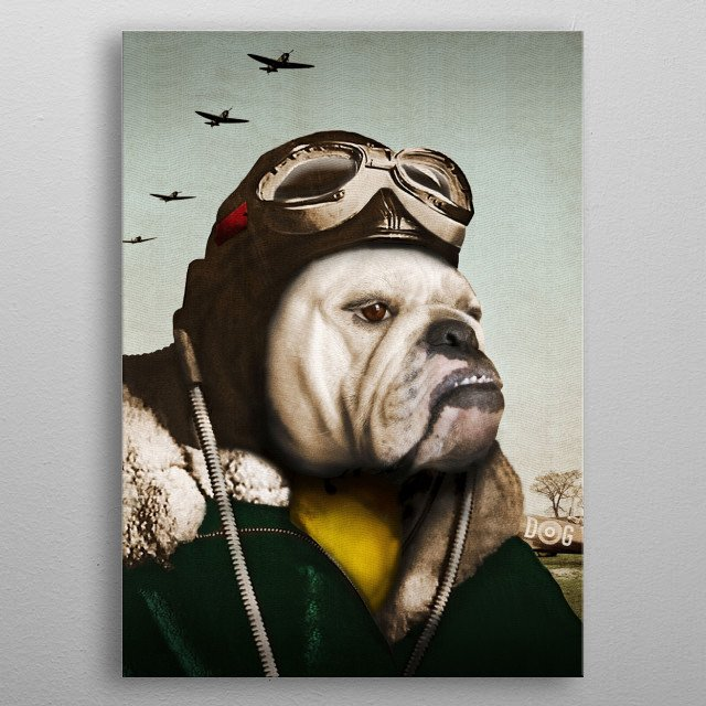 "Wing Commander, Benton ""Bulldog"" Bailey of the RAF metal poster"