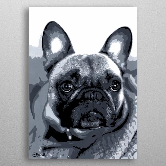Murphy the French Bulldog  metal poster