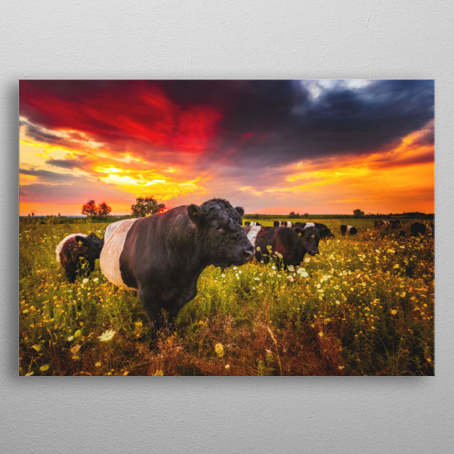This marvelous metal poster designed by MarcBraner to add authenticity to your place. Display your passion to the whole world. metal poster