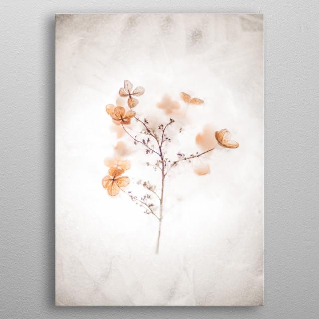 brown flower metal poster