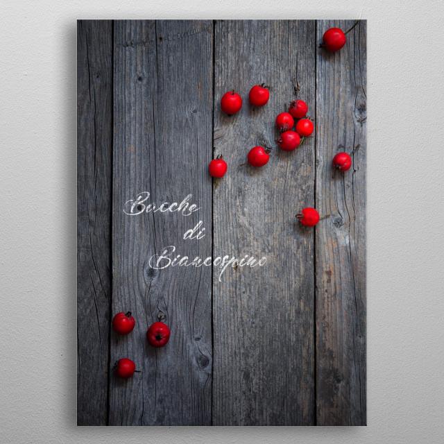 Hawthorn berries metal poster
