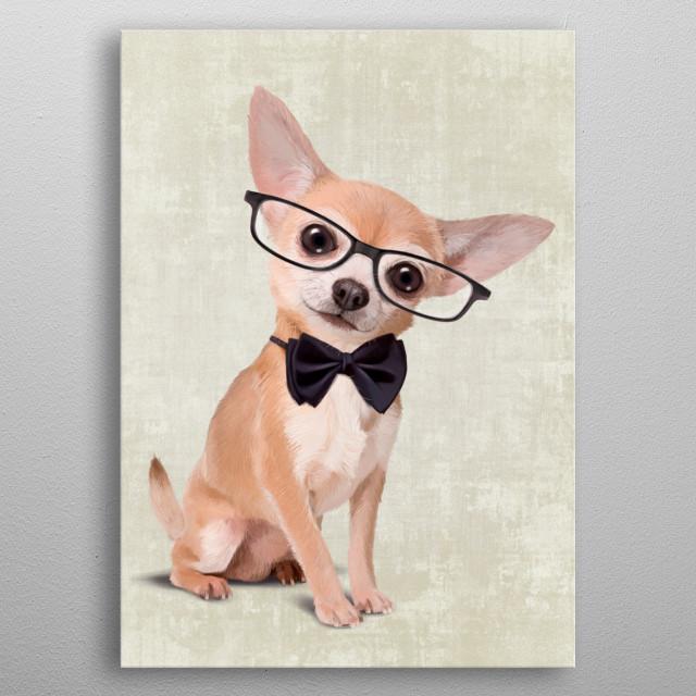Mr Chihuahua metal poster
